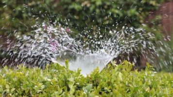 impianti di irrigazione e orto
