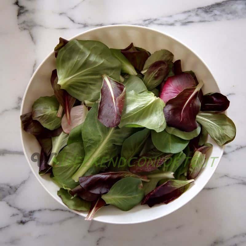 raccolta foglie di insalata